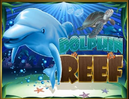 dolphin-reef-1